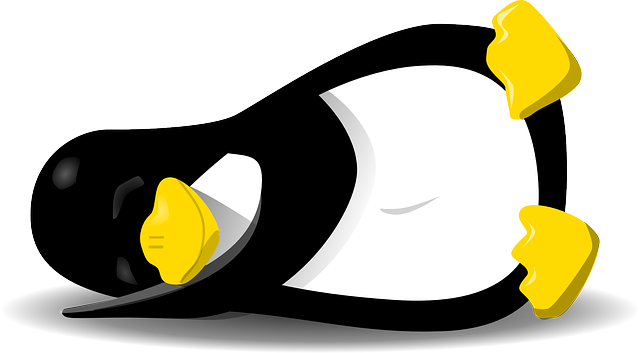 Linux Stable Sleeping